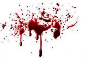 اختلافات شخصی؛ انگیزه قتل در سجاس