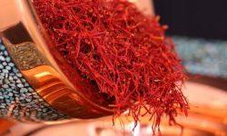 کشت زعفران در ۳۱ هکتار از اراضی خدابنده